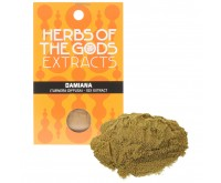Damiana extrait 10X [Turnera Diffusa] (Herbs of the Gods) 5 grammes