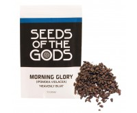 Graines de Morning Glory (10 grammes) - Heavenly Blue