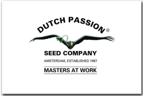 Dutch Passion Graines logo Dutch Headshop