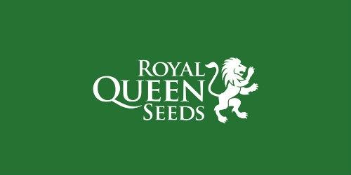 Royal Queens Seeds logo Dutch Headshop